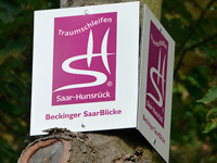 Markierung Beckinger Saarblicke