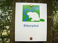 Markierung Biberpfad