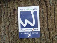 Markierung Birgeler Urwald