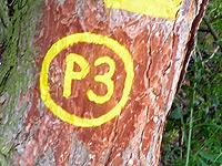 Markierung Über die Blaue Kuppe P3