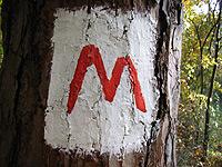 Markierung Der Meininger