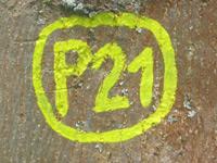 Markierung Point India P21