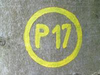 Markierung Waldkappeler Berge P17