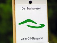 Markierung Extratour Dernbachwiesen