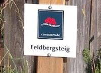 Markierung Feldbergsteig