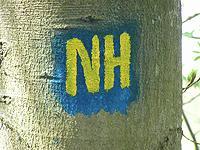 Markierung Nuhnehöhenweg