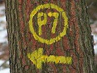 Markierung Söder Wald P7