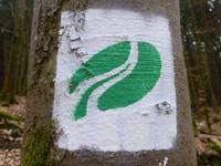 Markierung Felsenweg 2