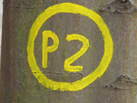 Markierung Frankershäuser Karst P2