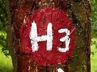 Markierung H3 Habichtswald - Im Glanz des Herkules