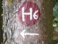 Markierung H6 Bad Emstal - Im Tal der Quellen