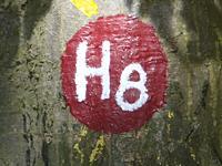 Markierung H8 Naumburg - Im Tal der zwei Burgen