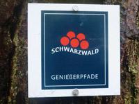 Markierung Heidelbeerweg