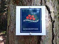 Markierung Schluchseer Jägersteig