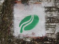 Markierung Moore-Pfad Schneifel