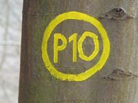 Markierung Reichenbach P10