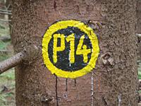 Markierung Bilstein P14