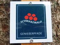 Markierung Schramberger Burgenpfad