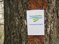 Markierung Tecklenburger Bergpfad
