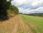 Aartalsee-Panoramaweg