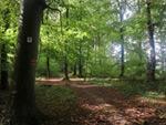 Dolinenweg