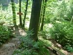 Ensheimer Brunnenweg