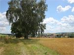 Hatzbacher Sagentour