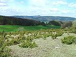 Heiligenberg P8