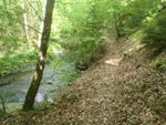 Oberes Baybachtal