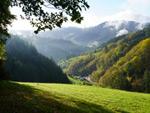 Peterstaler Schwarzwaldsteig