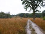 Pietersheim Heide Route