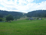 U(h)rwaldpfad Rohrhardsberg