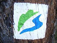 Markierung Urwald-Tour
