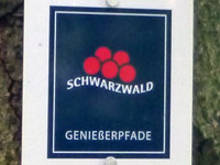 Markierung U(h)rwaldpfad Rohrhardsberg