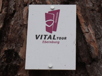 Markierung VitalTour Ebernburg