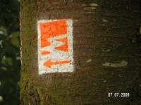 Markierung Waldseepfad Rieden