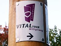 Markierung Willigisweg